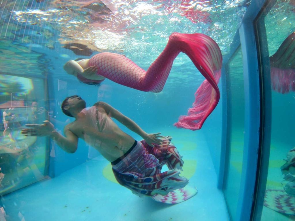 Auf Meerjungfrauen-Treffen und Events kann man den Mermaid-Lifestyle leben.